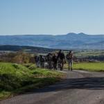 2015-11-01 - RNR Le Puy - Côme de Dumast-17